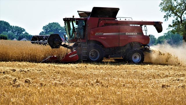 harvest-4364852_640