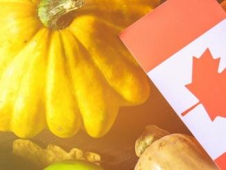 Canadian Visa Expert: Canadian Thanksgiving